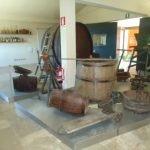 Esposizione Museo del Vino