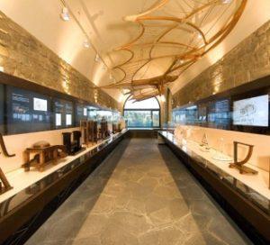 Museo Leonardiano - Castello dei Conti Guidi