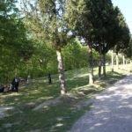 Vialetto del parco della Canonica