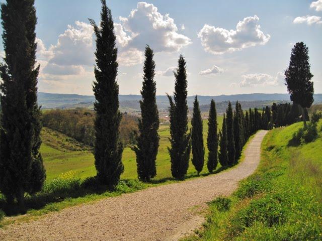 Parco di Canonica e Parco Fluviale