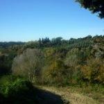 Pressi di Villa Collegalli
