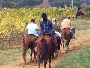 Gambassigena_escursioni a cavallo