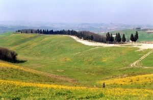 Paesaggio della Canonica